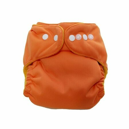 Sweet Lili cloth diaper